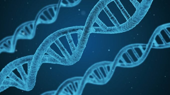 DNA - Genes - research
